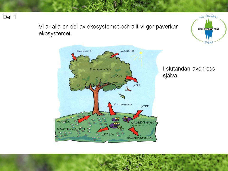 Del 1 Vi är alla en del av ekosystemet och allt vi gör påverkar ekosystemet.