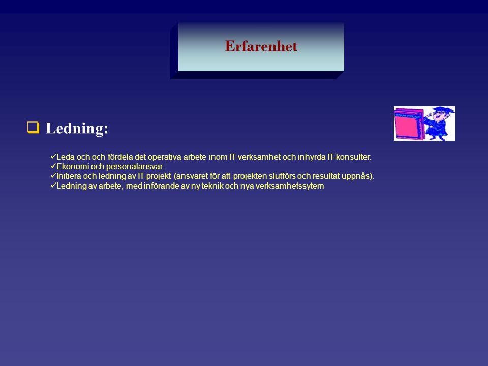Erfarenhet Ledning: Leda och och fördela det operativa arbete inom IT-verksamhet och inhyrda IT-konsulter.