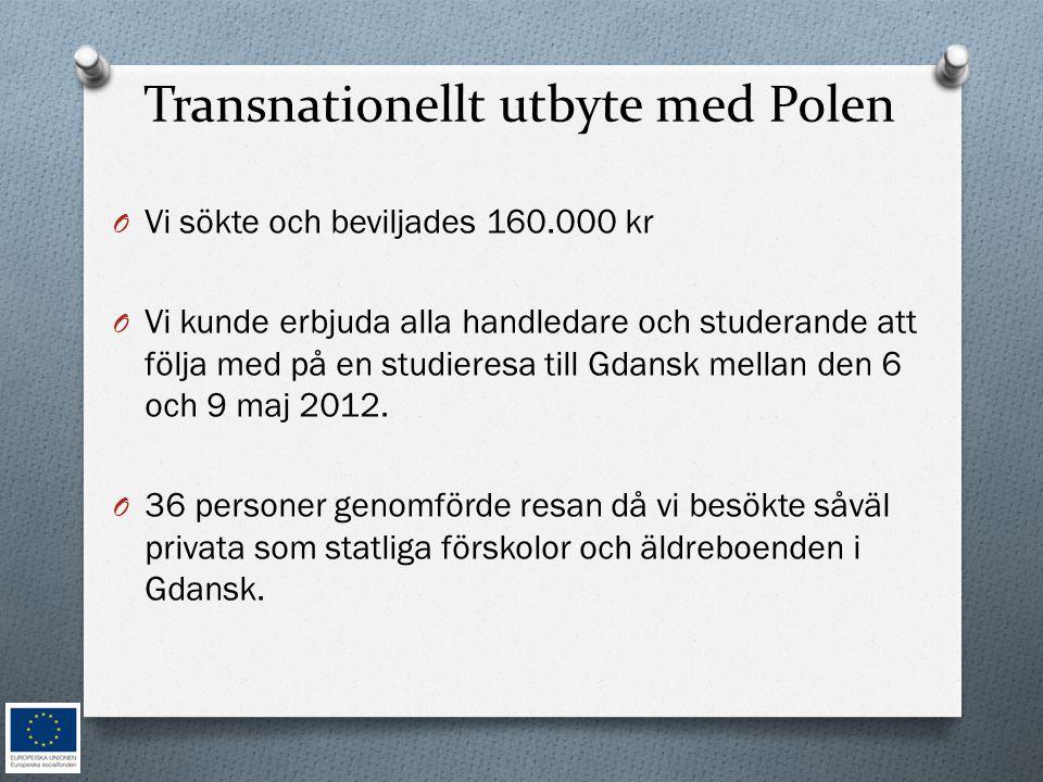 Transnationellt utbyte med Polen