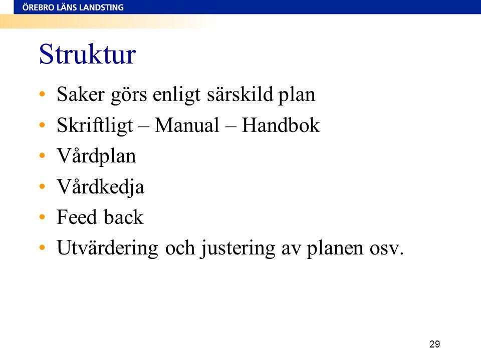 Struktur Saker görs enligt särskild plan Skriftligt – Manual – Handbok