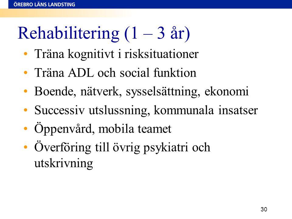 Rehabilitering (1 – 3 år) Träna kognitivt i risksituationer