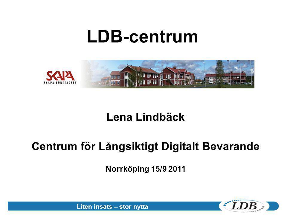 Centrum för Långsiktigt Digitalt Bevarande