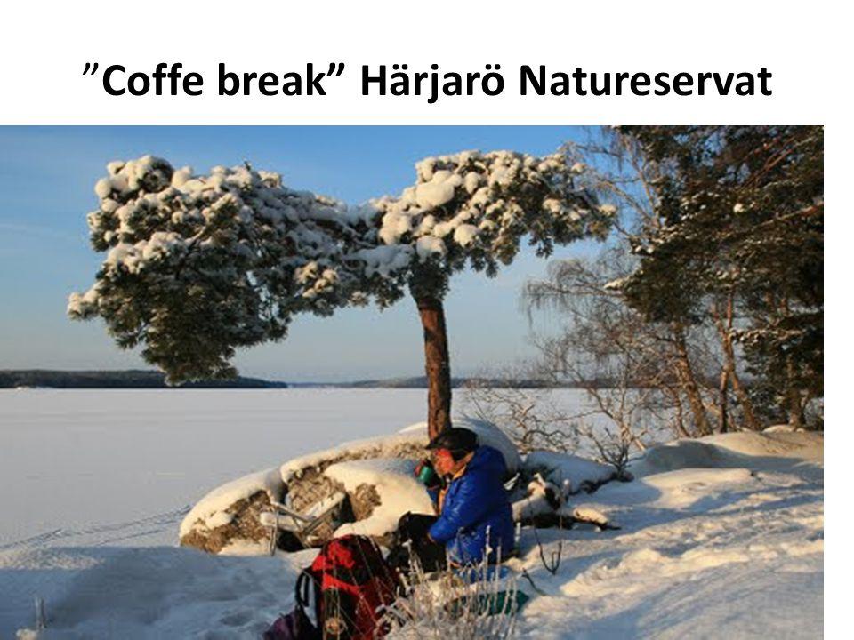 Coffe break Härjarö Natureservat