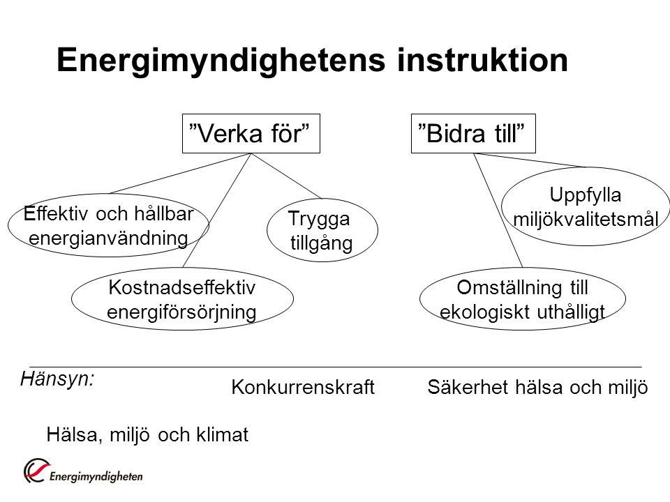 Energimyndighetens instruktion