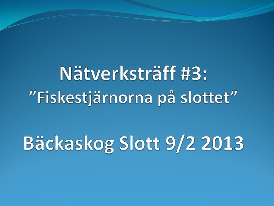 Nätverksträff #3: Fiskestjärnorna på slottet Bäckaskog Slott 9/2 2013