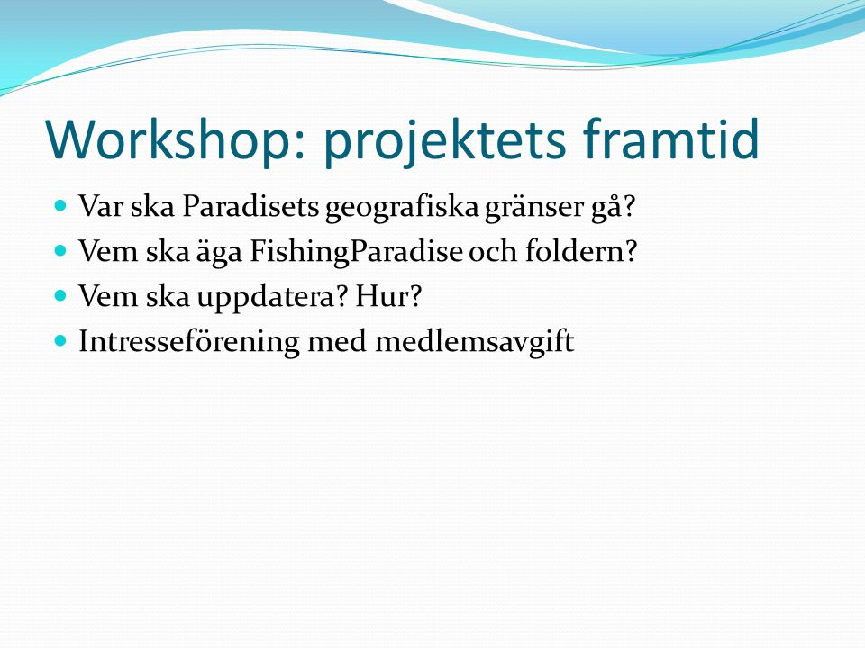 Workshop: projektets framtid