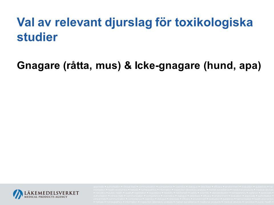 Val av relevant djurslag för toxikologiska studier