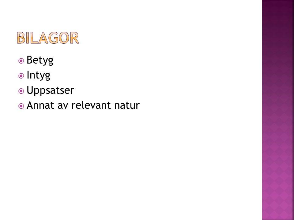 Bilagor Betyg Intyg Uppsatser Annat av relevant natur