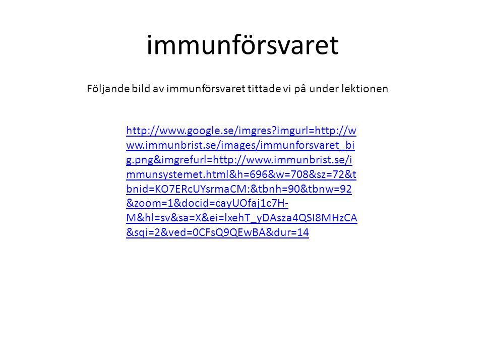 immunförsvaret Följande bild av immunförsvaret tittade vi på under lektionen.