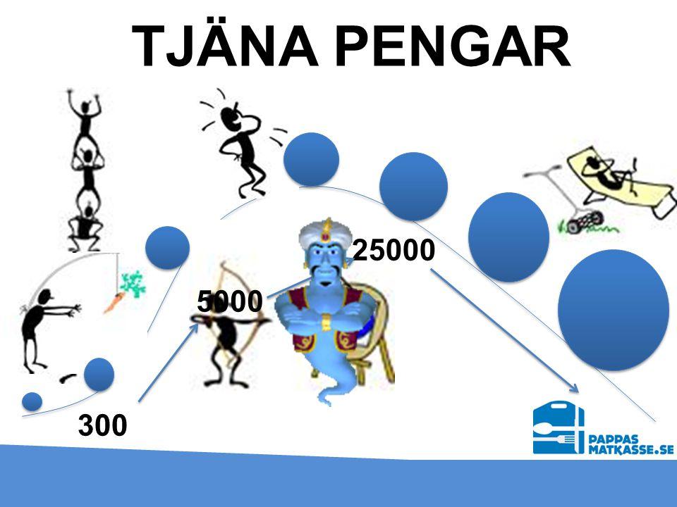 TJÄNA PENGAR 25000 5000 300