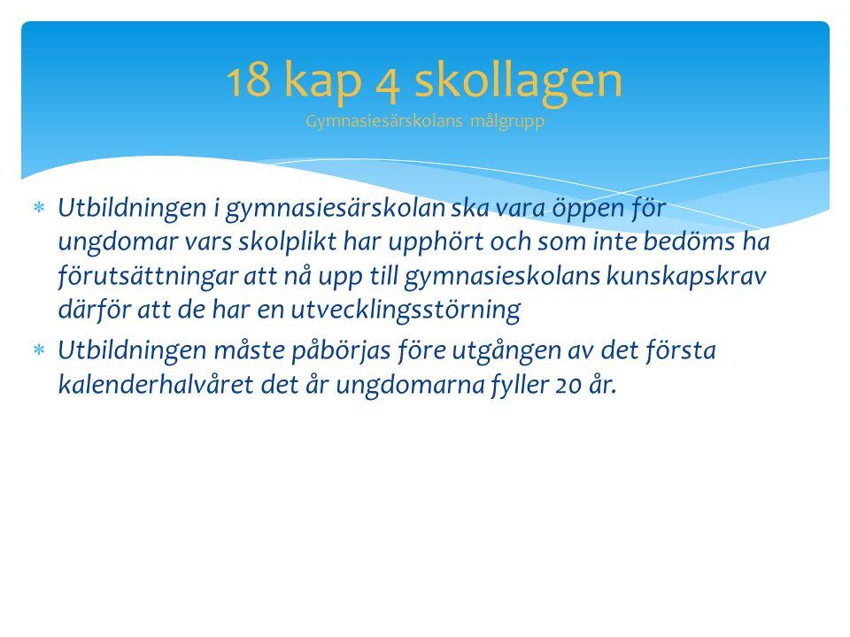 18 kap 4 skollagen Gymnasiesärskolans målgrupp