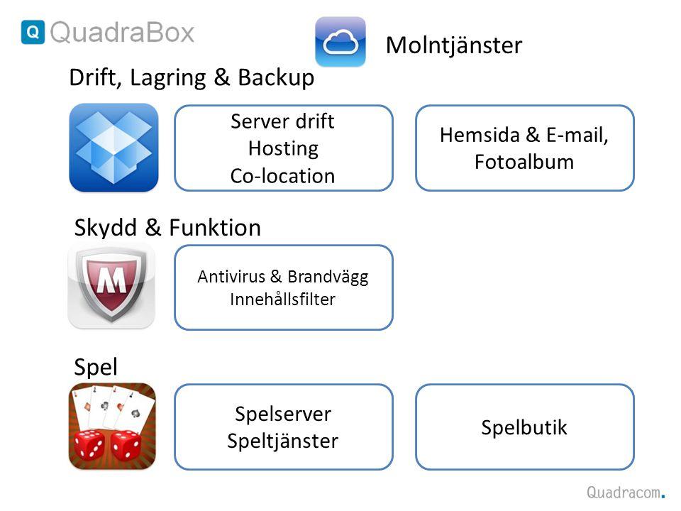 Molntjänster Drift, Lagring & Backup Skydd & Funktion Spel