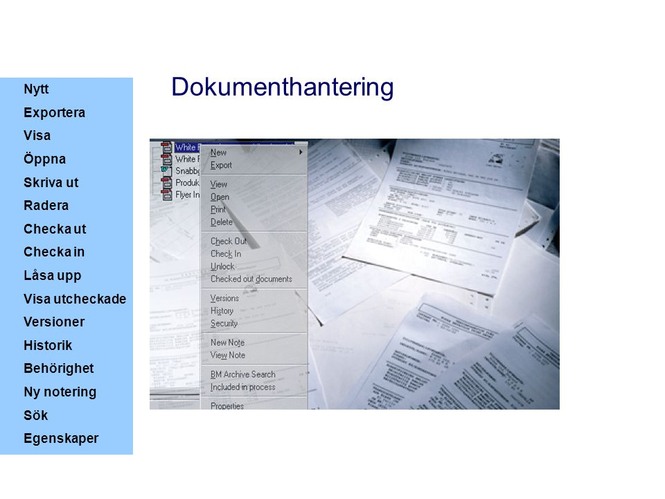 Dokumenthantering Nytt Exportera Visa Öppna Skriva ut Radera Checka ut
