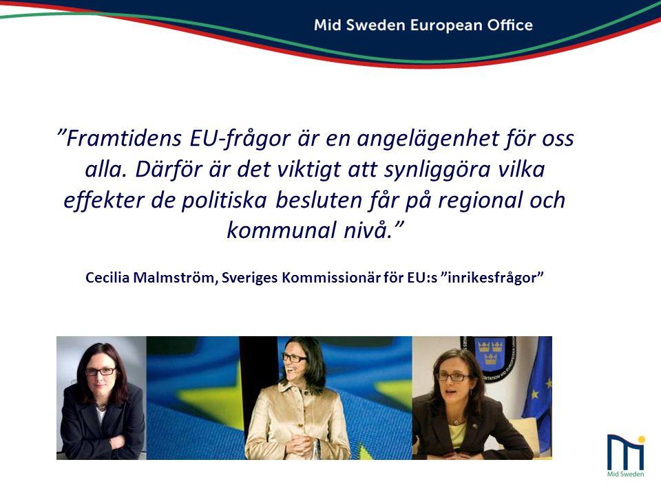 Framtidens EU-frågor är en angelägenhet för oss alla