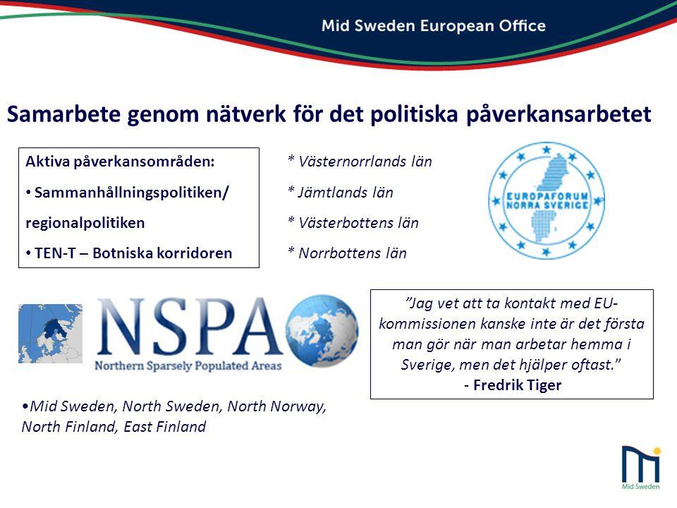 Samarbete genom nätverk för det politiska påverkansarbetet