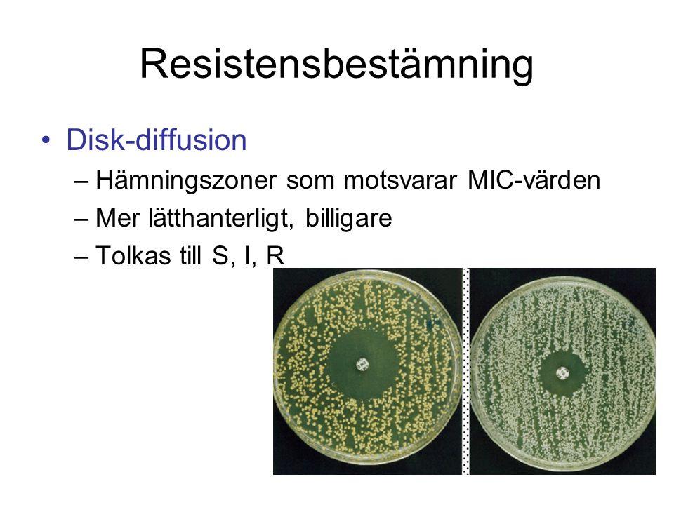 Resistensbestämning Disk-diffusion