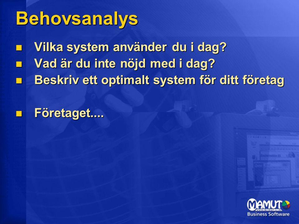 Behovsanalys Vilka system använder du i dag
