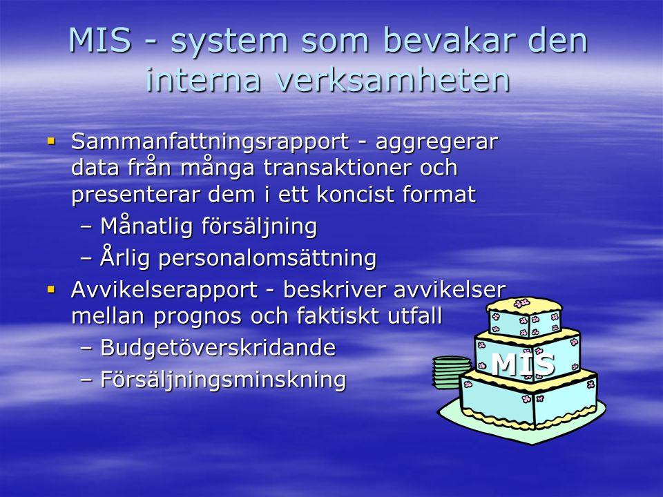 MIS - system som bevakar den interna verksamheten