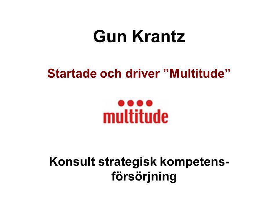 Gun Krantz Startade och driver Multitude