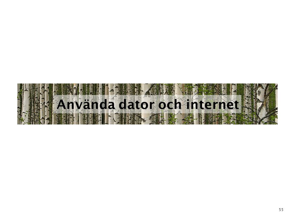 Använda dator och internet