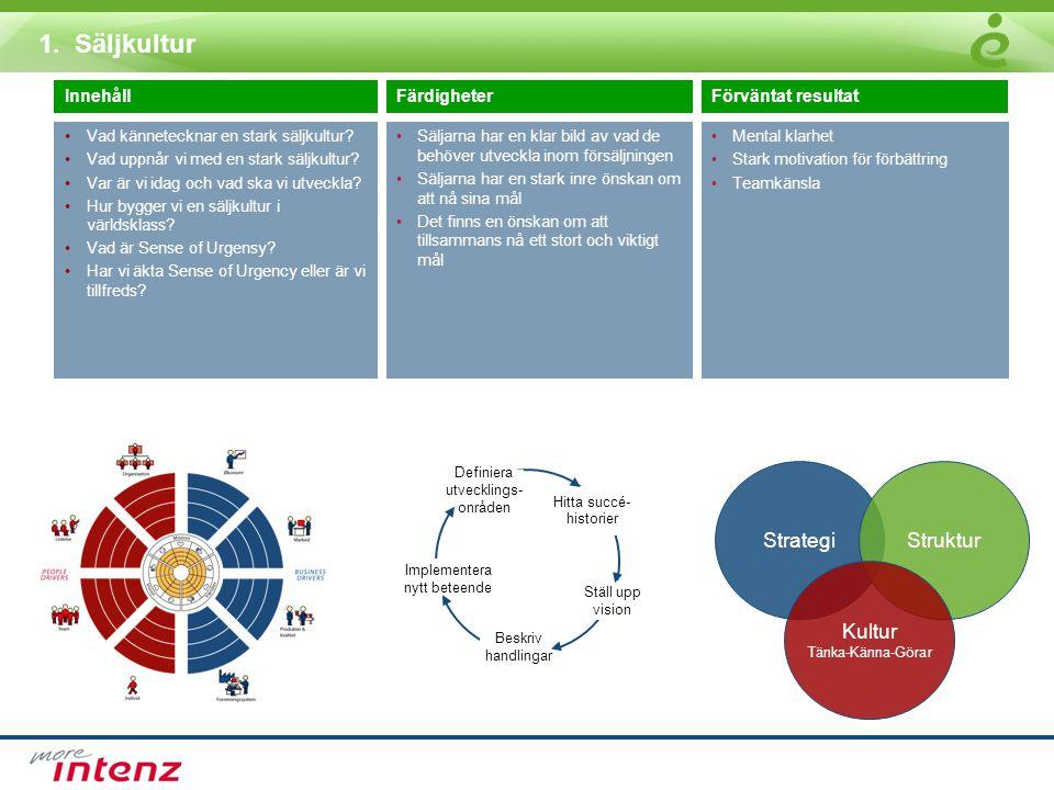 1. Säljkultur Strategi Struktur Kultur Innehåll Färdigheter