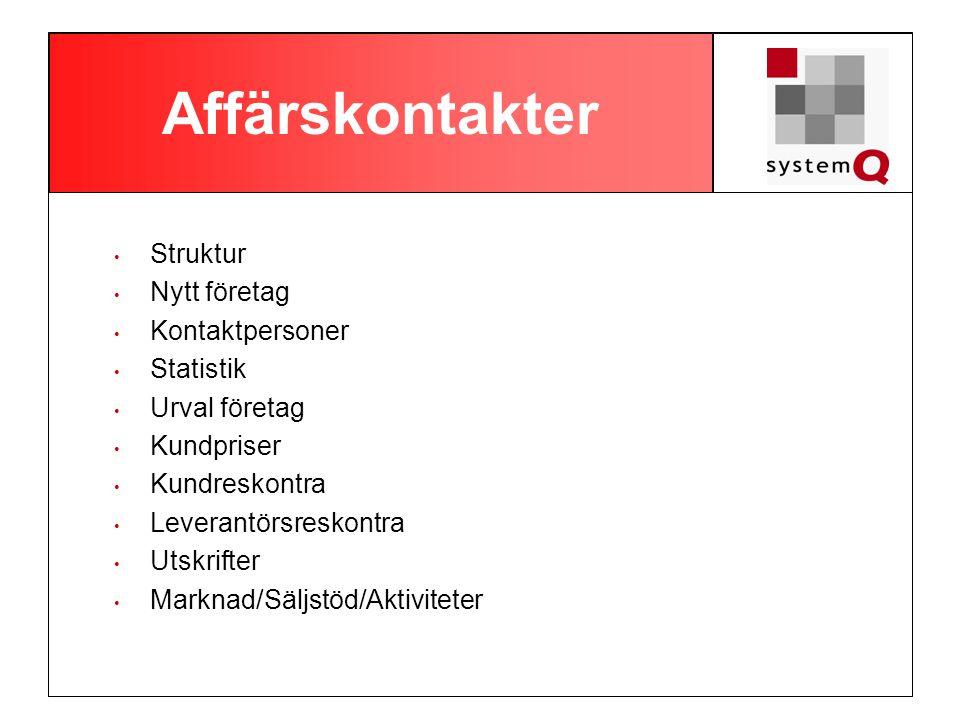 Affärskontakter Struktur Nytt företag Kontaktpersoner Statistik