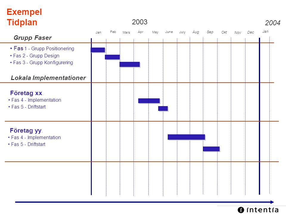 Exempel Tidplan 2003 2004 Grupp Faser Lokala Implementationer