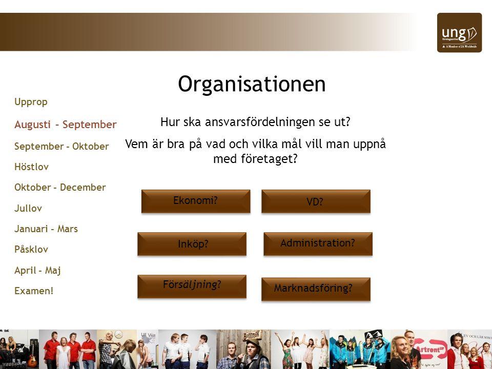 Organisationen Hur ska ansvarsfördelningen se ut
