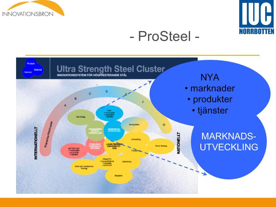 - ProSteel - NYA marknader produkter tjänster MARKNADS- UTVECKLING