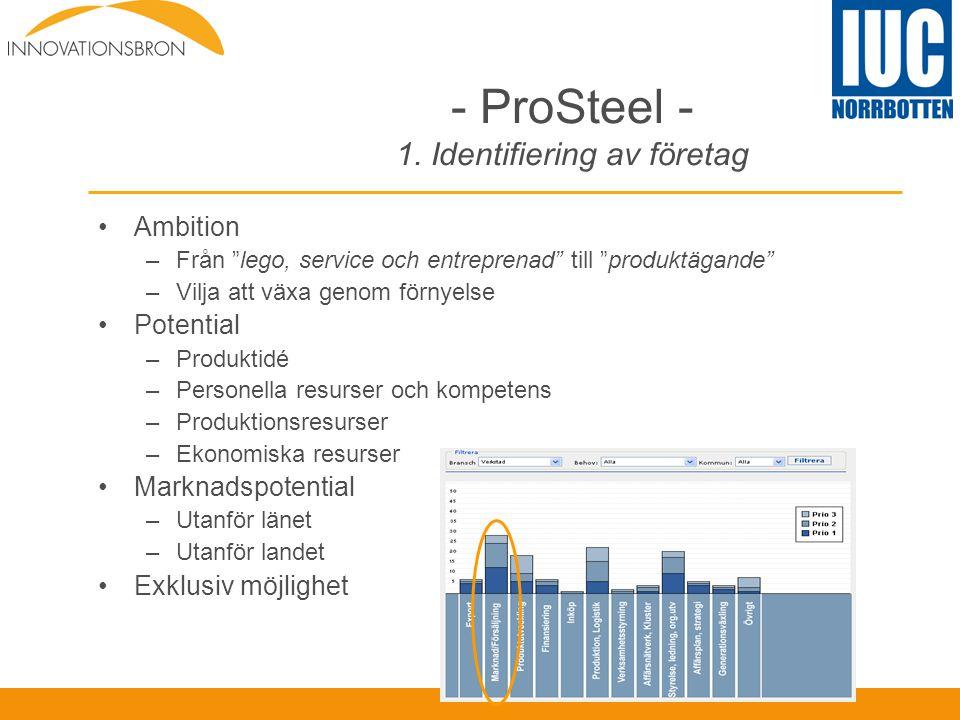 - ProSteel - 1. Identifiering av företag