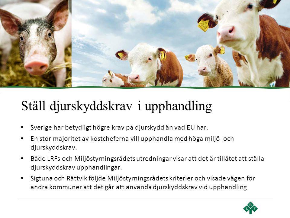Ställ djurskyddskrav i upphandling