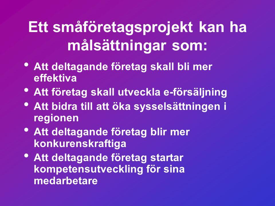 Ett småföretagsprojekt kan ha målsättningar som: