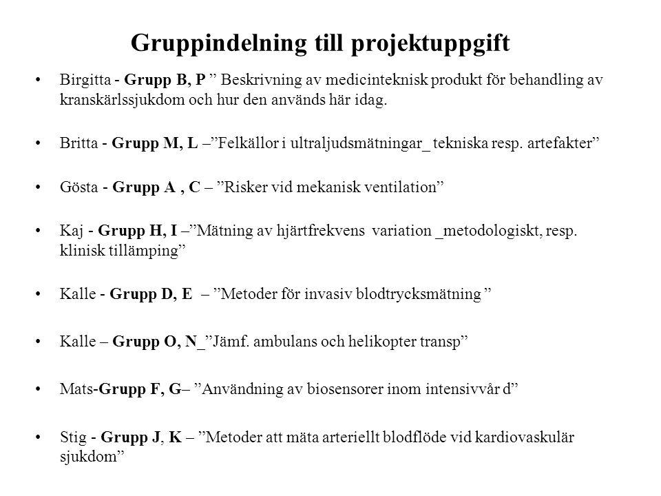 Gruppindelning till projektuppgift