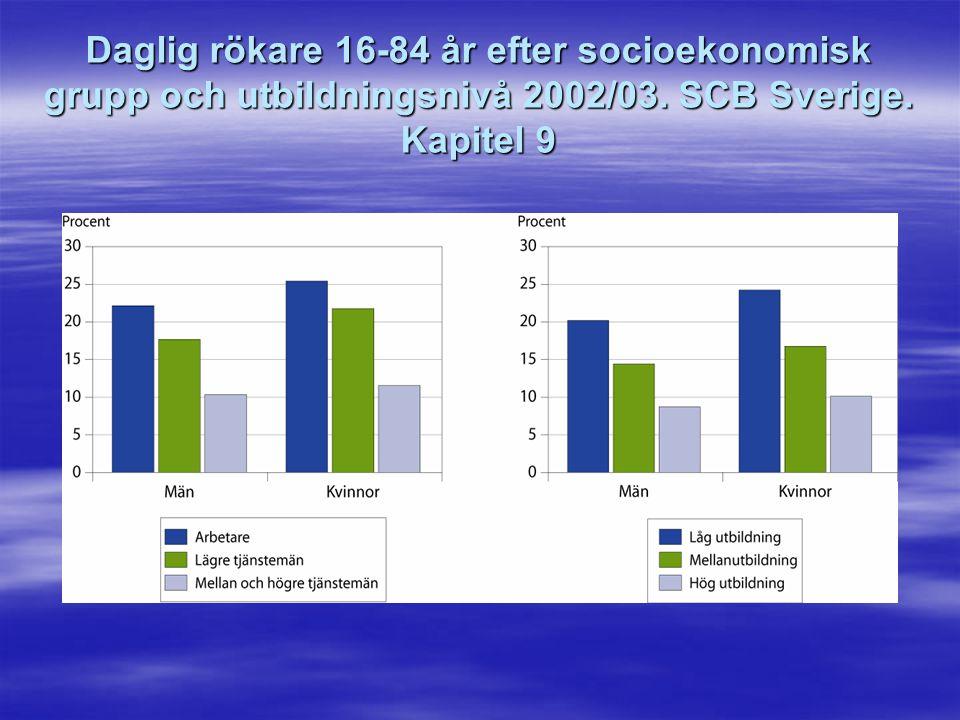 Daglig rökare 16-84 år efter socioekonomisk grupp och utbildningsnivå 2002/03.