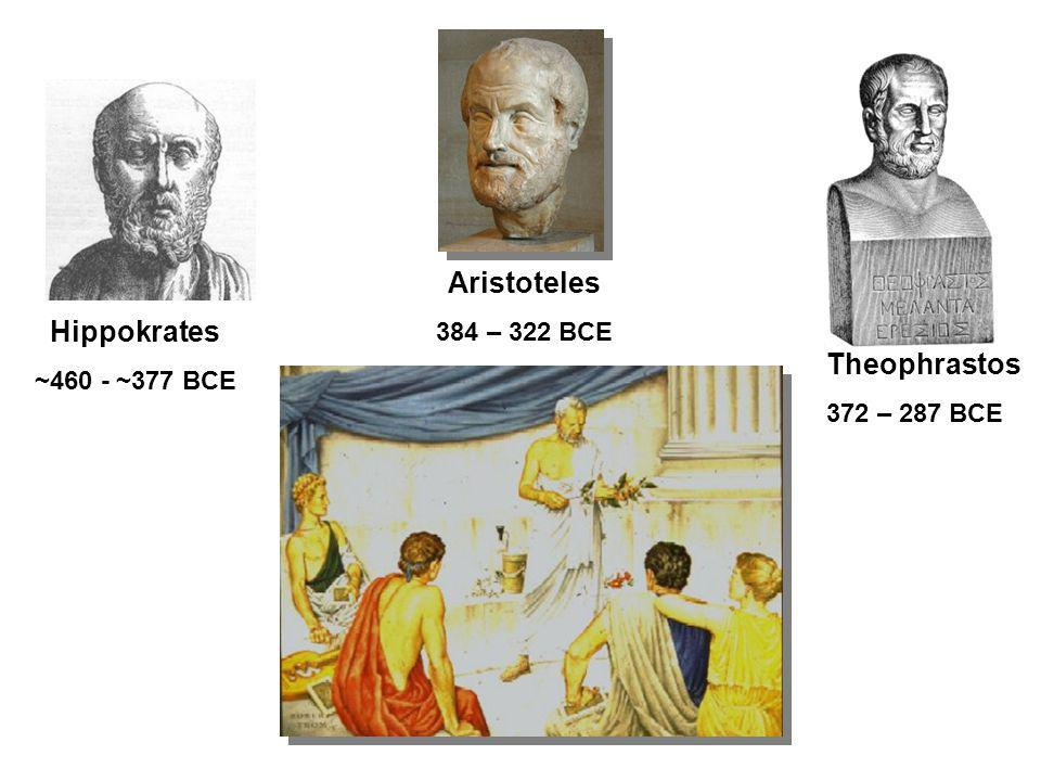 Aristoteles Hippokrates