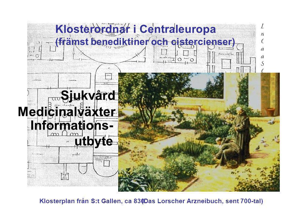 Sjukvård Medicinalväxter Informations-utbyte