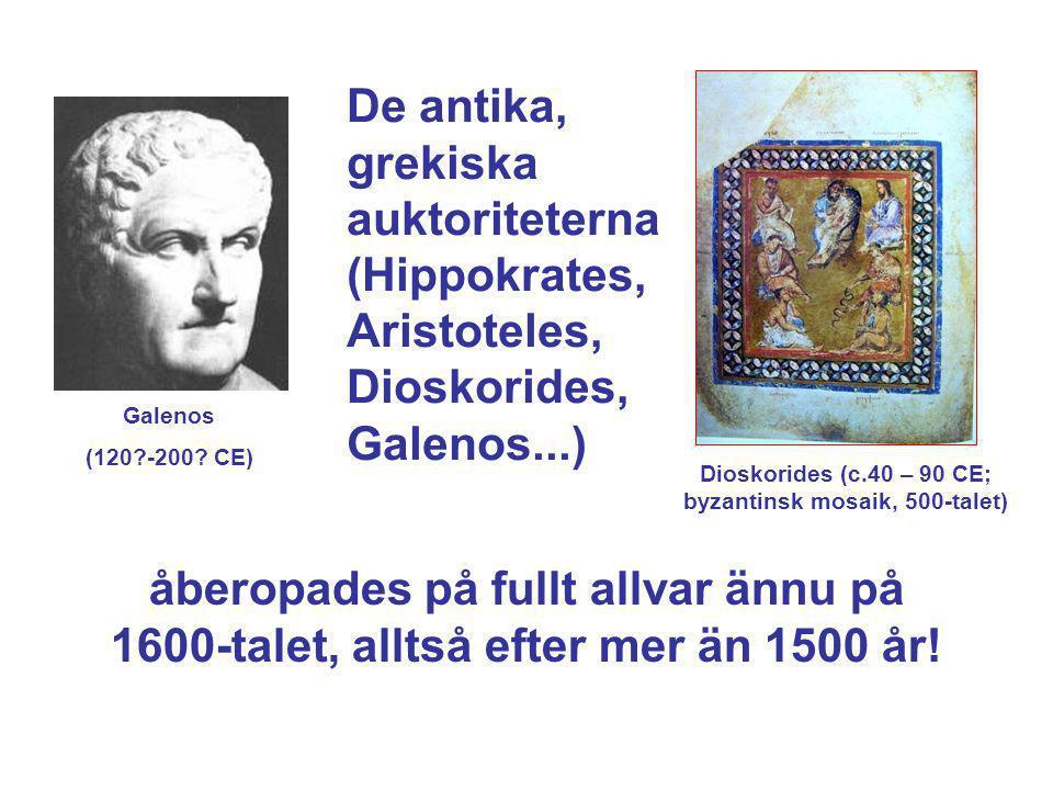 Dioskorides (c.40 – 90 CE; byzantinsk mosaik, 500-talet)