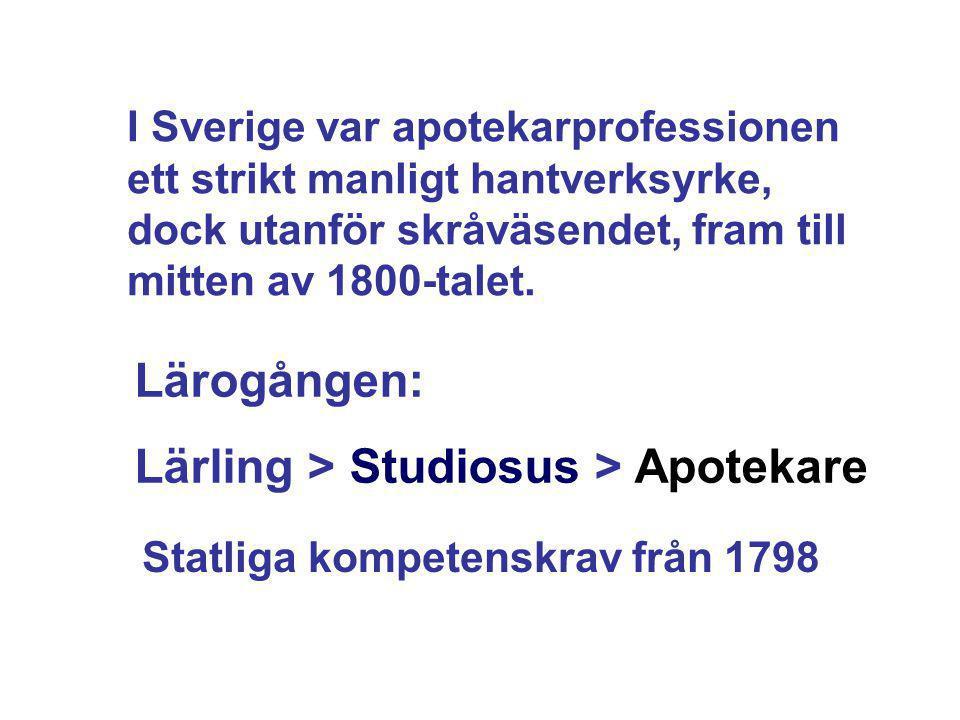 Lärling > Studiosus > Apotekare