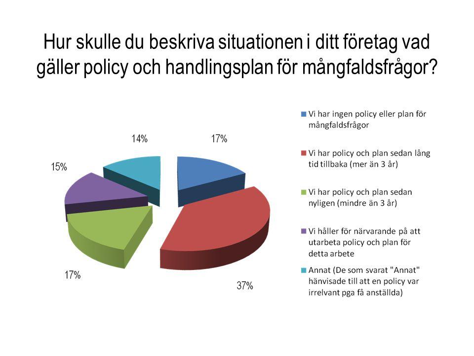 Hur skulle du beskriva situationen i ditt företag vad gäller policy och handlingsplan för mångfaldsfrågor