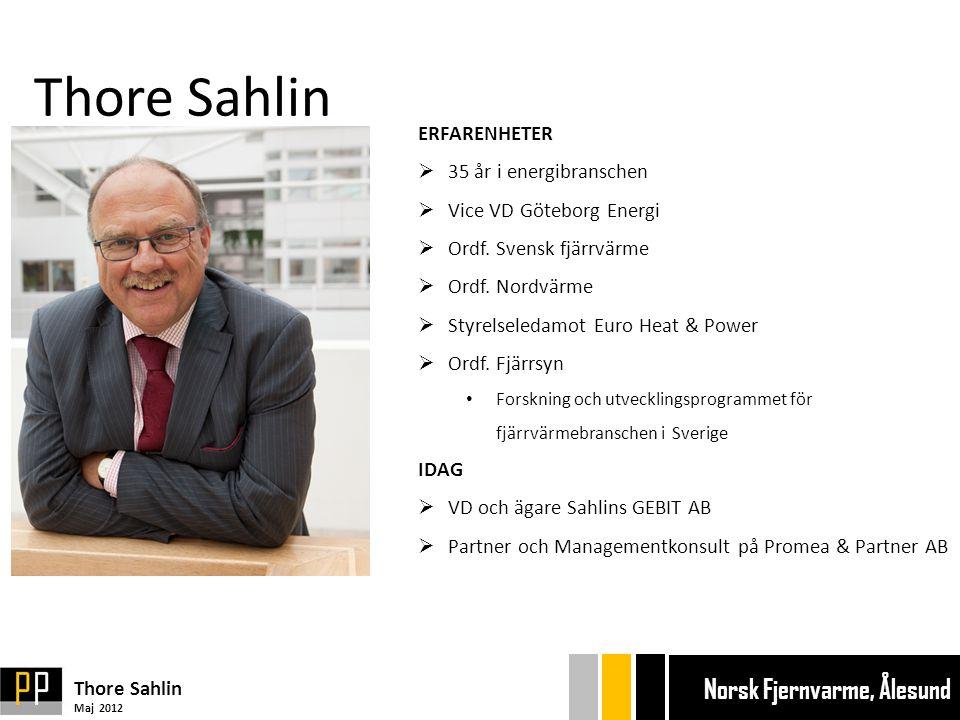 Thore Sahlin ERFARENHETER 35 år i energibranschen