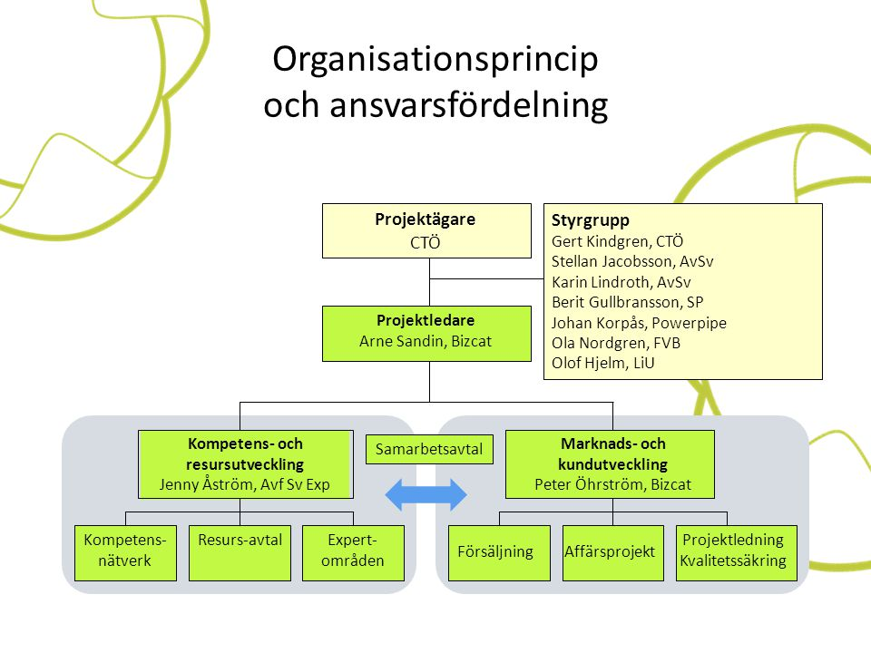 Organisationsprincip och ansvarsfördelning