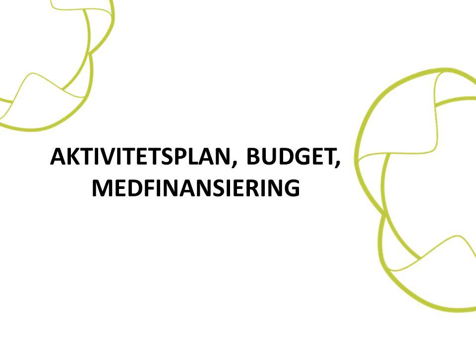 Aktivitetsplan, budget, medfinansiering