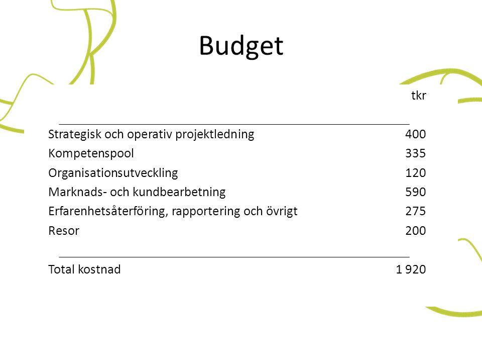 Budget tkr Strategisk och operativ projektledning 400