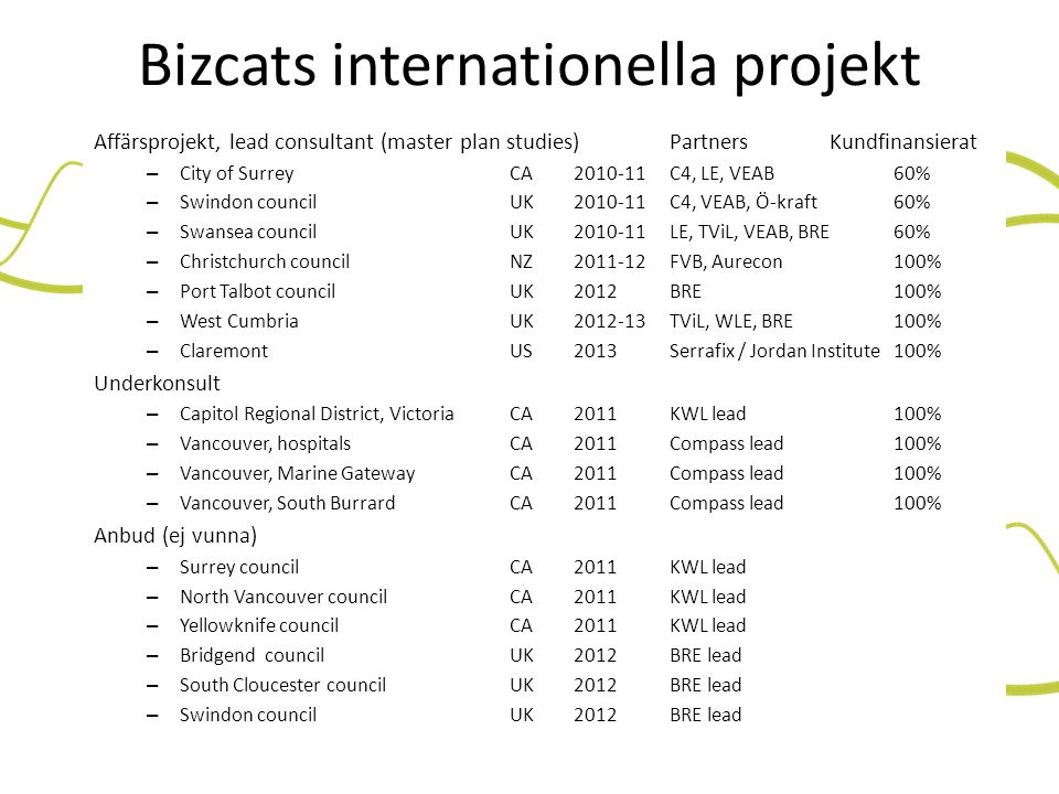 Bizcats internationella projekt