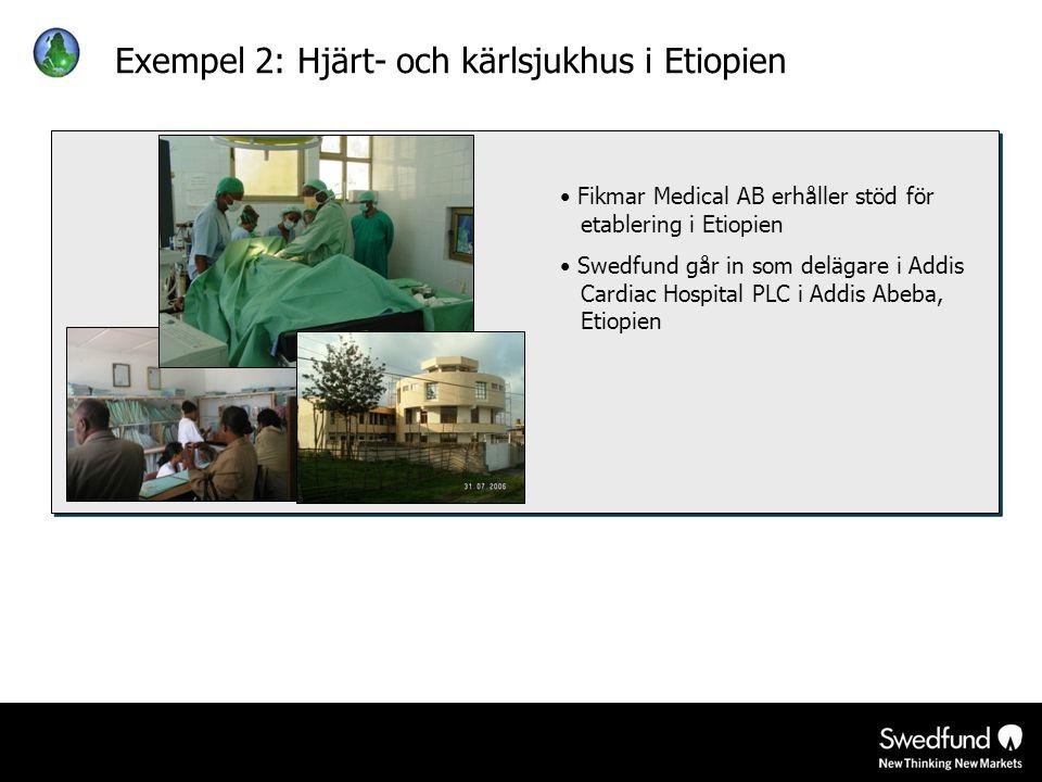 Exempel 2: Hjärt- och kärlsjukhus i Etiopien