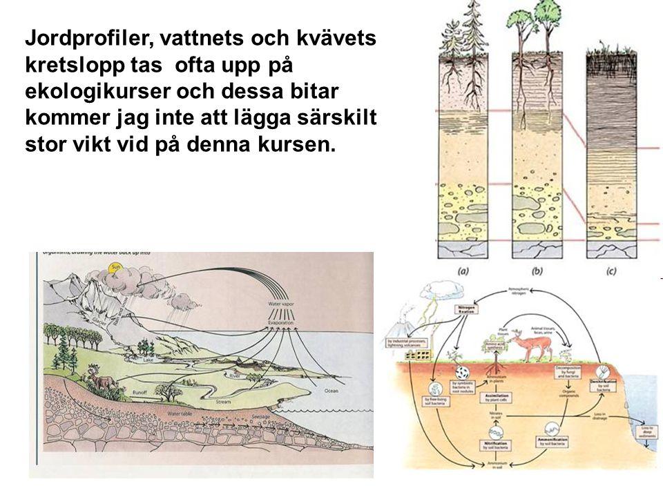 Jordprofiler, vattnets och kvävets kretslopp tas ofta upp på ekologikurser och dessa bitar kommer jag inte att lägga särskilt stor vikt vid på denna kursen.