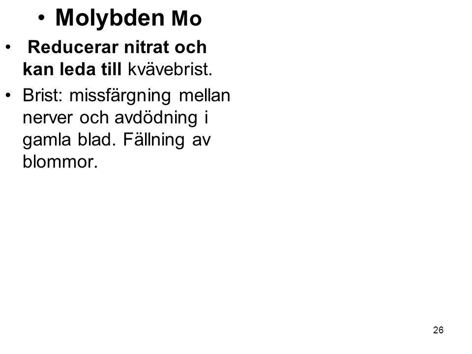 Molybden Mo Reducerar nitrat och kan leda till kvävebrist.