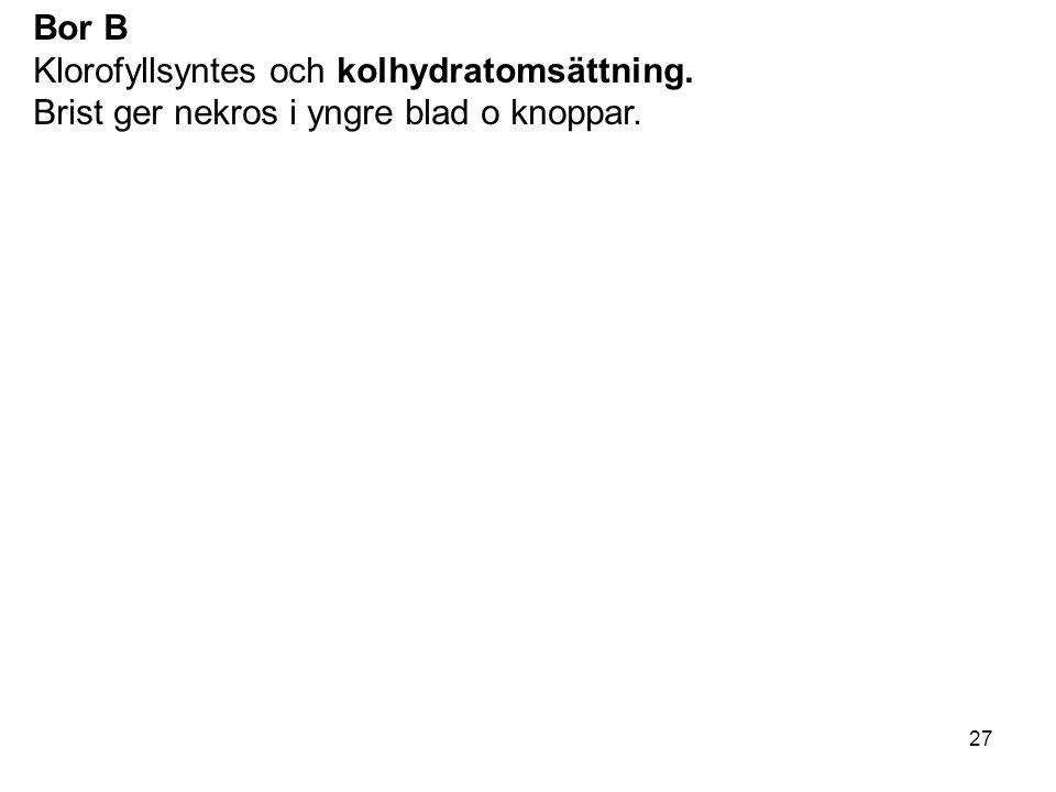Bor B Klorofyllsyntes och kolhydratomsättning. Brist ger nekros i yngre blad o knoppar.