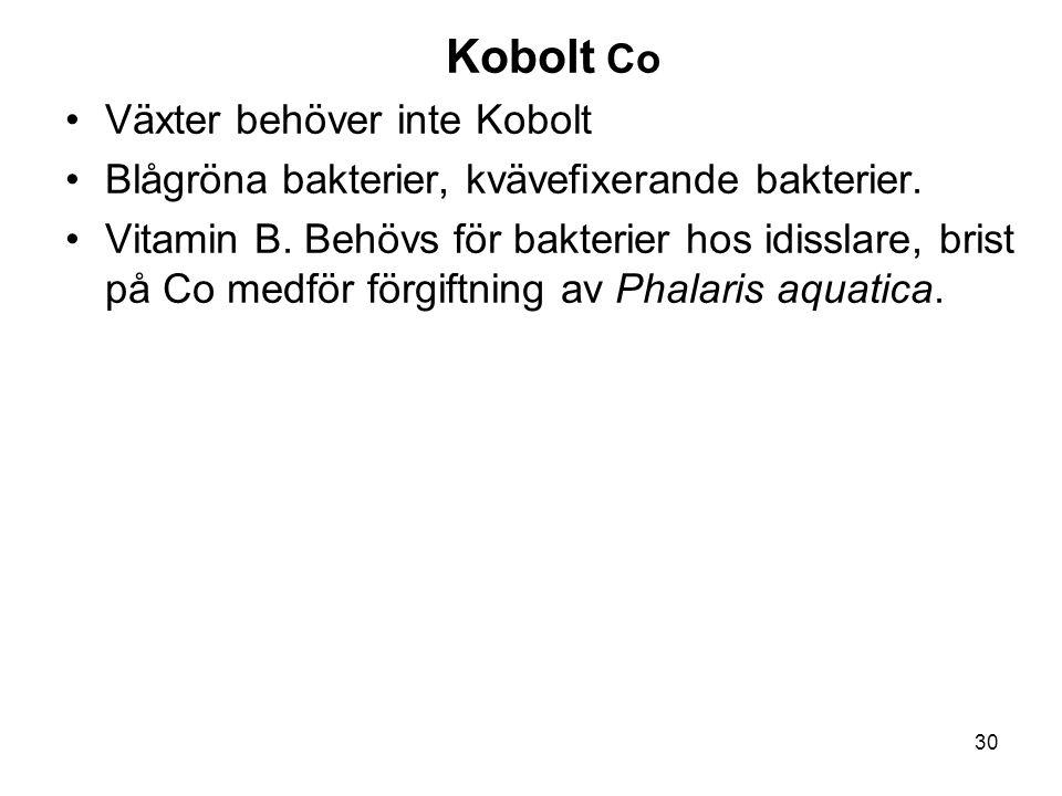 Kobolt Co Växter behöver inte Kobolt. Blågröna bakterier, kvävefixerande bakterier.