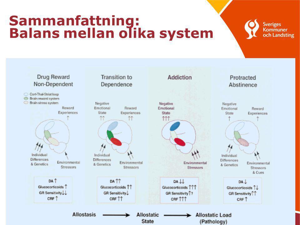 Sammanfattning: Balans mellan olika system